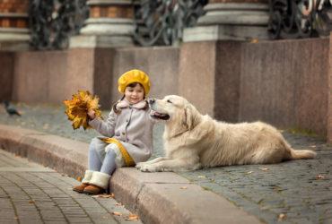 Геморрагии у собаки. Причины и первая помощь питомцу.