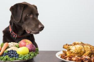 Правильная диета – важный элемент лечения.