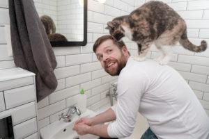 После контакта с кошкой необходимо мыть руки для избегания заражения стафилококком